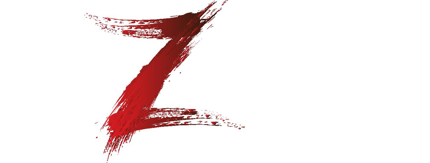 ViZual_logo_White